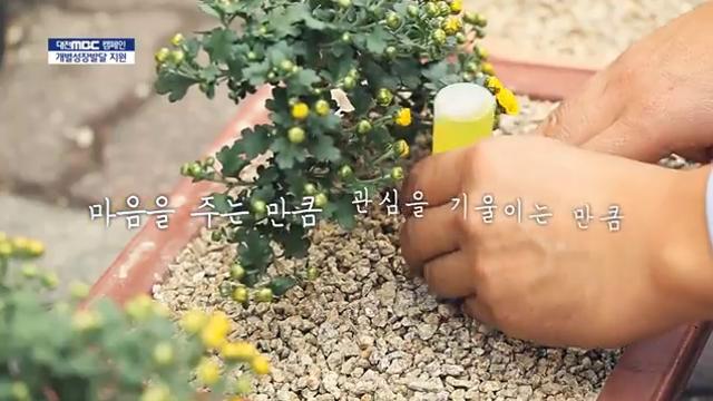 [교육청]MBC 세종형 학교혁신 개별성장발달지원사업 캠페인 사진