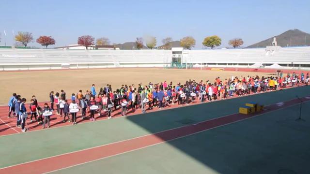 2015 세종학생체육대회 사진